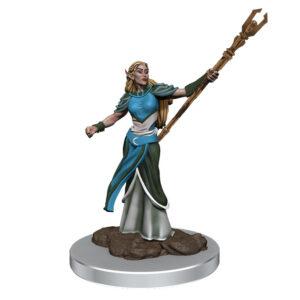 WZK93053 • Female Elf Sorcerer