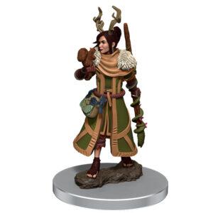 WZK93054 • Female Human Druid