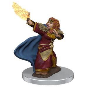 WZK93056 • Female Dwarf Wizard