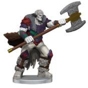 Ashari Stoneguard