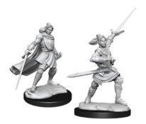 WZK90390 • Half-Elf Paladin Xhorhas Female • $4.99