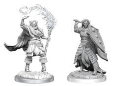 Elf Cleric Male (WZK90404)
