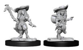 Pathfinder Deep Cuts: Gnome Bard Female (WZK90327)
